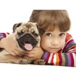 Common Health issues with Dogs